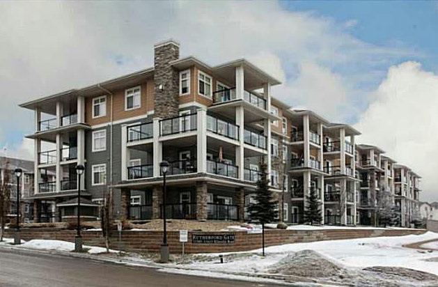 147 11505 Ellerslie Road, Edmonton, AB T6W 2A9 (#E4139217) :: The Foundry Real Estate Company