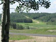 220 49320 Range Rd 240A, Rural Leduc County, AB T4X 0W1 (#E4141697) :: Initia Real Estate