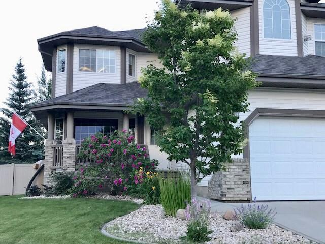 149 53302 RGE RD 261, Rural Parkland County, AB T7Y 1A7 (#E4146781) :: Mozaic Realty Group