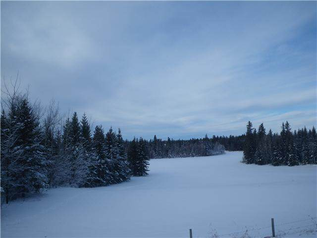 314 55504 Rge Rd 13, Rural Lac Ste. Anne County, AB T0V 1V0 (#E4213581) :: RE/MAX River City