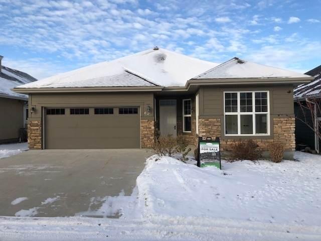 63 18343 Lessard Road, Edmonton, AB T6M 0A2 (#E4223116) :: The Foundry Real Estate Company