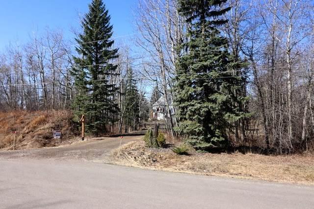 266 52249 RGE RD 233, Rural Strathcona County, AB T8B 1C7 (#E4226308) :: Initia Real Estate