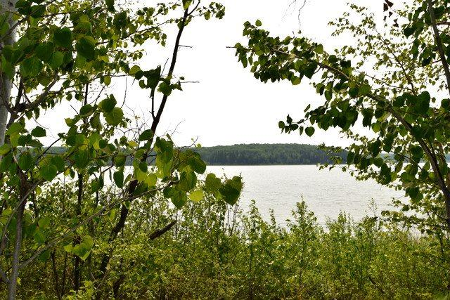 4 Lakeshore Dr , Skeleton Lake, Rural Athabasca County, AB T0A 0M0 (#E4135738) :: David St. Jean Real Estate Group