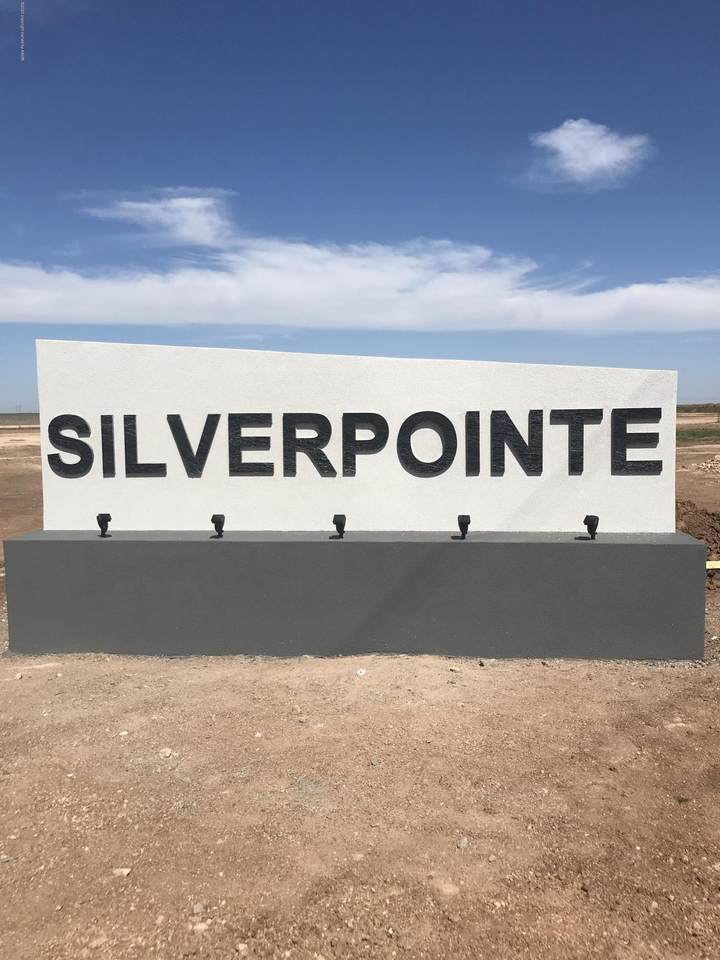 0 Silverpointe - Photo 1