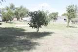 703 Oak - Photo 1