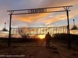 Tampico Ranch - Photo 117