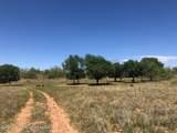 Tampico Ranch - Photo 16
