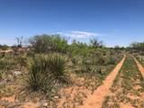 Tampico Ranch - Photo 17