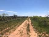Tampico Ranch - Photo 2