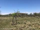 Tampico Ranch - Photo 30