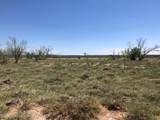 Tampico Ranch - Photo 40
