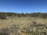 Tampico Ranch - Photo 43