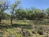 Tampico Ranch - Photo 45
