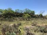 Tampico Ranch - Photo 52
