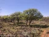 Tampico Ranch - Photo 53