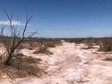 Tampico Ranch - Photo 7