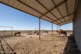 214 Aoudad Ranch Trl - Photo 45