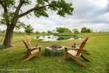 221 Aoudad Ranch - Photo 12