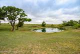 221 Aoudad Ranch - Photo 13