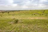 221 Aoudad Ranch - Photo 16
