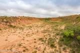 221 Aoudad Ranch - Photo 17