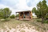 221 Aoudad Ranch - Photo 23