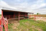 221 Aoudad Ranch - Photo 7