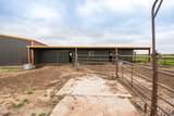 221 Aoudad Ranch - Photo 9
