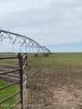 630 Acres in Waka, Tx - Photo 1