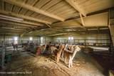 221 Aoudad Ranch Trl - Photo 12