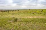 221 Aoudad Ranch Trl - Photo 17