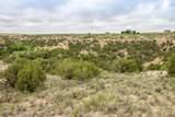 221 Aoudad Ranch Trl - Photo 19