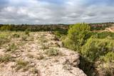 221 Aoudad Ranch Trl - Photo 20