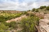 221 Aoudad Ranch Trl - Photo 21