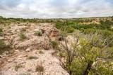 221 Aoudad Ranch Trl - Photo 22
