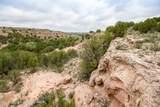 221 Aoudad Ranch Trl - Photo 23