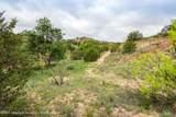 221 Aoudad Ranch Trl - Photo 26