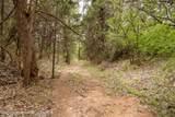 221 Aoudad Ranch Trl - Photo 29