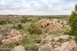 221 Aoudad Ranch Trl - Photo 32