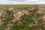 221 Aoudad Ranch Trl - Photo 34