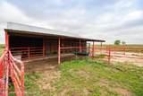 221 Aoudad Ranch Trl - Photo 8