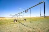 North Hereford Irrigated Farm - Photo 1