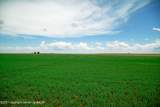 Farm 1737 Tract 42 - Photo 1