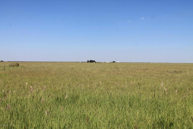 Sherman County Grass, Stratford, TX 79084 (#17-109230) :: Gillispie Land Group
