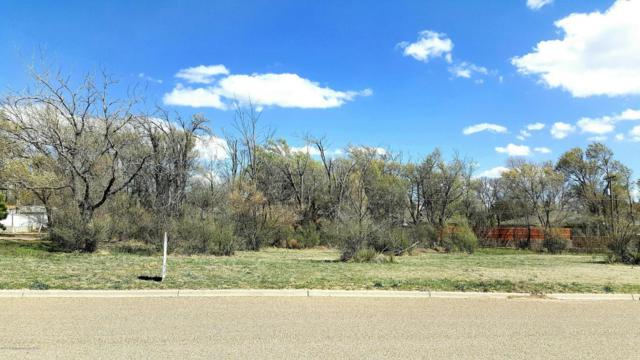 30 Canyon View Dr, Dalhart, TX 79022 (#17-109403) :: Edge Realty