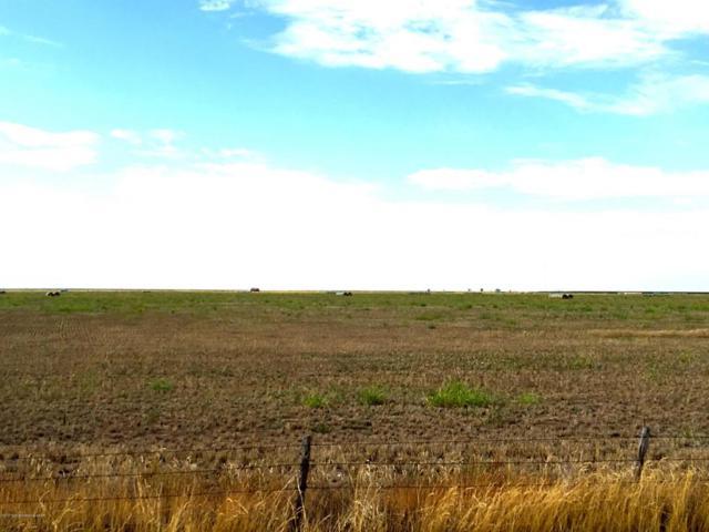 Hutchinson County 411, Stinnett, TX 79083 (#17-109578) :: Lyons Realty