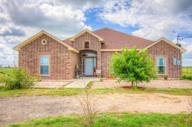 1311 Wheeler Rd, Amarillo, TX 79118 (#17-109782) :: Big Texas Real Estate Group