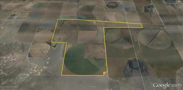 Fm 152, Dumas, TX 79029 (#17-109836) :: Elite Real Estate Group