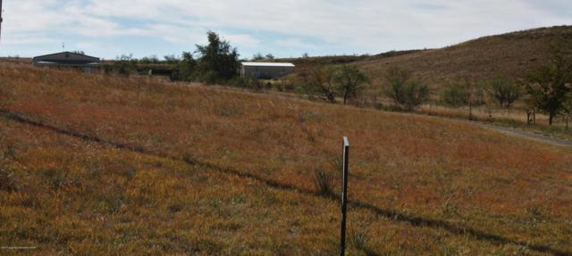 11251 East View Dr, Amarillo, TX 79124 (#17-110278) :: Elite Real Estate Group