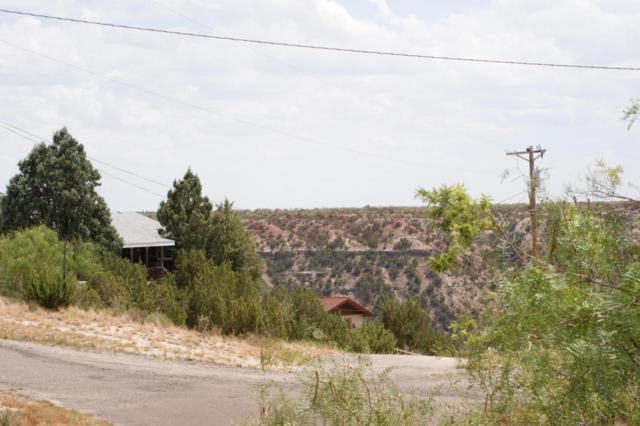 0 Canyon Dr, Canyon, TX 79015 (#17-110438) :: Big Texas Real Estate Group